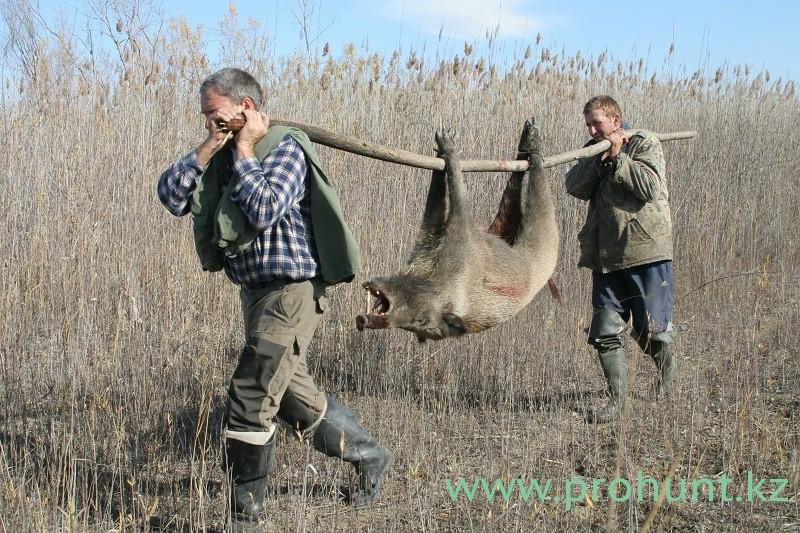 каталог видеороликов об рыбалке и охоте
